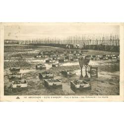 33 ARCACHON. Les Collecteur pour la récolte des Huîtres dans le Parc 1934