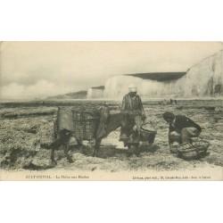 80 AULT-ONIVAL. La Pêche aux Moules avec âne