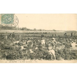 76 LE HAVRE. La Pêche aux Crabes 1907