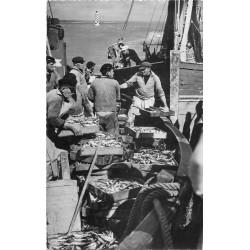 Cpsm Cpm 29 LOCTUDY. Arrivée d'un Sardiniers 1957