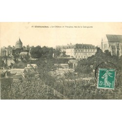 28 CHATEAUDUN. Château et Hospice vus de la Guinguette