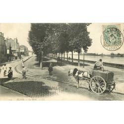 41 BLOIS. Attelage avec citerne d'eau sur le Mail 1906 ou nettoyeur de rues