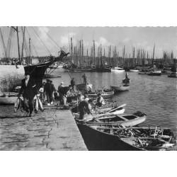 29 CONCARNEAU. Arrivage de Thons sur barques des Pêcheurs