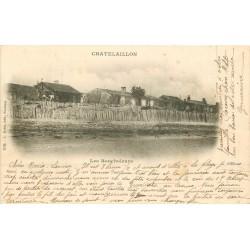 17 CHÂTELAILLON PLAGE. Les Boucholeurs 1902
