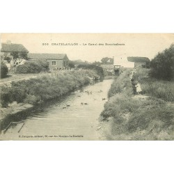 17 CHÂTELAILLON PLAGE. Le Canal des Boucholeurs avec canards