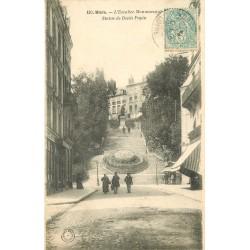 41 BLOIS. Escalier Monumental et Statue Denis-Papin 1906
