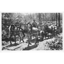 40 AU PAYS LANDAIS. Attelage de Mules 1955