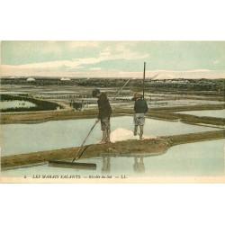 44 LE POULIGUEN. Marais Salants. Récolte du Sel