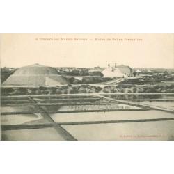 44 LE POULIGUEN. Marais Salants. Mulon de Sel en formation