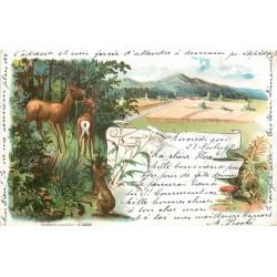 67 BAS RHIN Carte Rare Pionnière Précurseur. Biches et lapin à la Campagne
