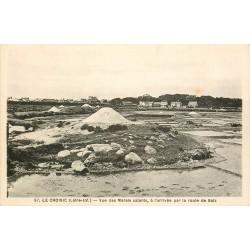 44 LE CROISIC. Les mulons des Marais Salants vus par la route de Batz