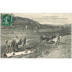carte postale ancienne 15 AUVERGNE. Hersage et Planage. La Vie aux Champs avec Paysans et Boeufs vers 1910