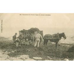 14 VILLERS-SUR-MER. Ramasseurs de Varech avec attelage 1904