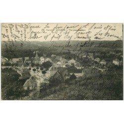 carte postale ancienne 15 CHAMPS. Vue panoramique du Village