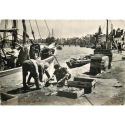 44 LE CROISIC. Débarquement de Poissons par des Pêcheurs sur les Quais 1954