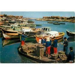 Photo Cpsm 33 ARCACHON. Le Triage des Huîtres dans le Bassin Ostréicole 1967