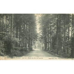 69 LES ECHARMEAUX. Entrée des Bois de Proprières 1908
