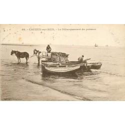 80 CAYEUX-SUR-MER. Le Débarquement du Poisson 1933