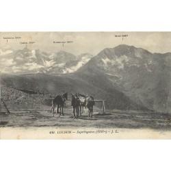 31 LUCHON. Chevaux de randonnées et vue sur Superbagnères 1914