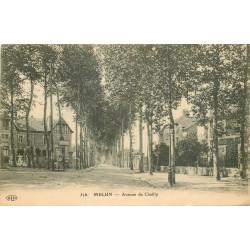 77 MELUN. Avenue de Chailly