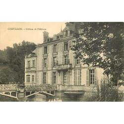 45 CHEVILLON. Château de Villoiseau
