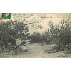 80 CAYEUX-SUR-MER. Le Bois de Sapins bien animé 1912