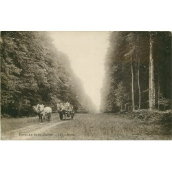 76 FORET DE SAINT-SAËNS. Les Lihuts avec attelage 1910