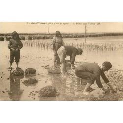 33 ANDERNOS-LES-BAINS. La Pêche aux Huîtres