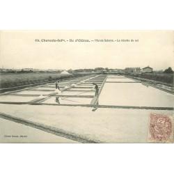 17 ILE D'OLERON. Paludiers pour la Récolte du Sel dans les Marais Salants
