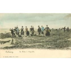14 CABOURG. La Pêche à l'Equille colorisée vers 1900
