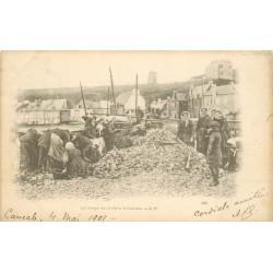 35 CANCALE. Le Triage des Huîtres 1901