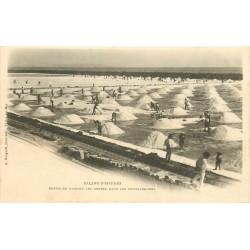 83 HYERES. Batteurs faisant les gerbes dans les Cristalisoires Salins vers 1900