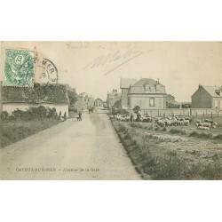 80 CAYEUX-SUR-MER. Avenue de la Gare avec troupeau de moutons 1907