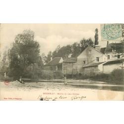 89 SEIGNELAY. Moulin du vieux Château animation 1905