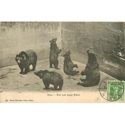 BERN BERNE. Alfe und junge Bären les Ours au Zoo 1908