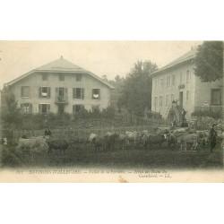 38 ALLEVARD-LES-BAINS environs. Vallée de la Ferrière Hôtel des Bains du Curtillard Paysans et Vaches