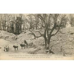 80 Château de HAM. Arbre de la Liberté dans les décombres