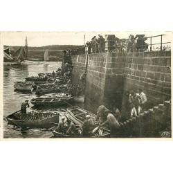 29 CONCARNEAU. Déchargement du Thon vers 1940