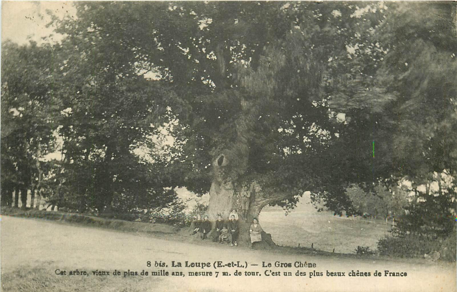 2 x Cpa 28 LA LOUPE. Le Gros Chêne et Terrasses Orangerie 1929