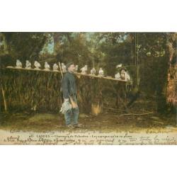 40 LANDES. Chasseurs de Palombes les appeaux qu'on va placer 1918