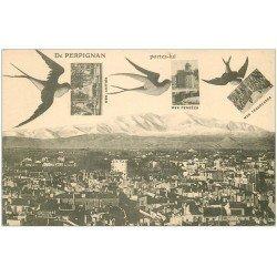 carte postale ancienne 66 PERPIGNAN. Cartes portées par des Hirondelles