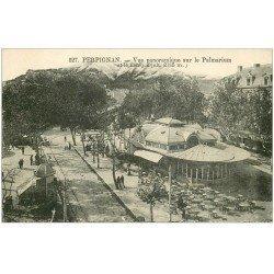 carte postale ancienne 66 PERPIGNAN. Le Palmarium et le Canigou