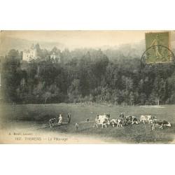 74 THORENS. Toupeau de vaches au Pâturage 1920