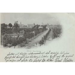 59 DOUAI. Rue d'Aniche 1914