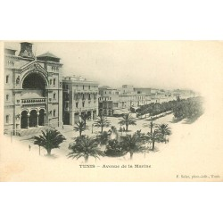 TUNIS vers 1900. Cathédrale Avenue de la Marine