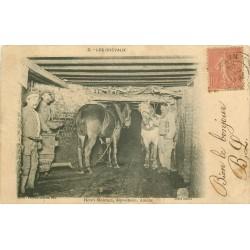 MINE MINEURS AU PAYS NOIR. Les Chevaux 1905