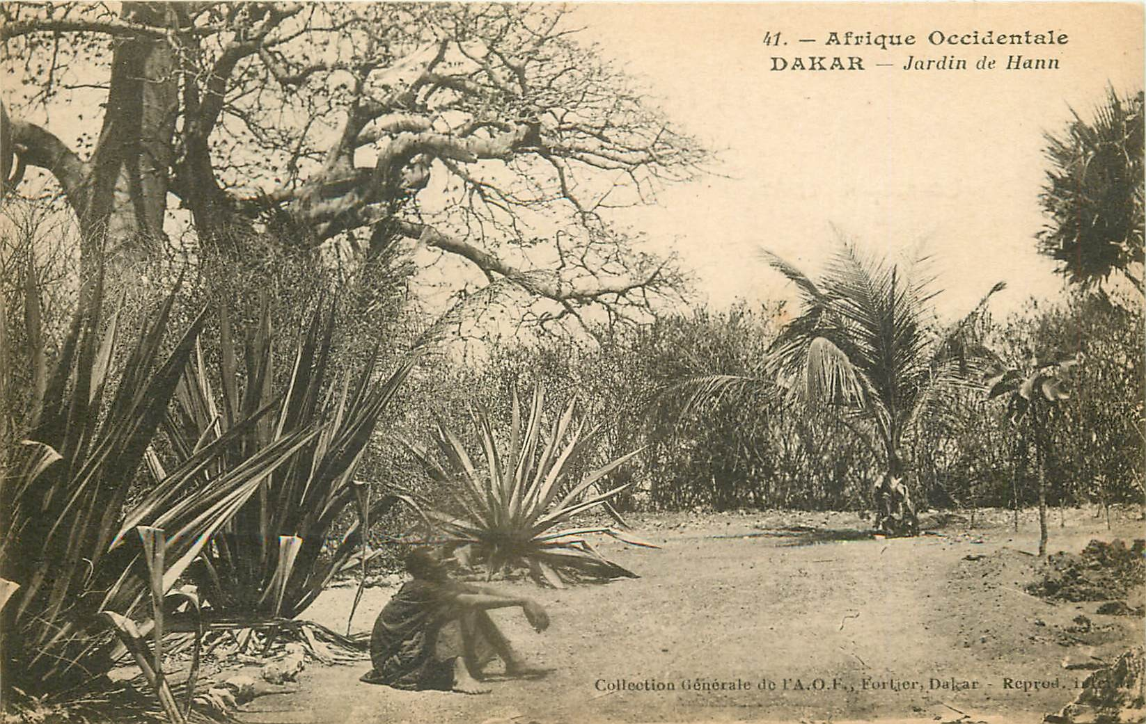 DAKAR. Jardin de Hann 1930 en Afrique