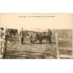 carte postale ancienne 63 AUVERGNE. La traite des Vaches