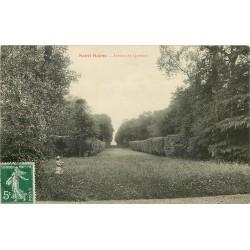 76 SAINT-SAËNS. Avenue du Quesnay avec fillette ramassant des Fleurs 1909