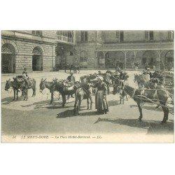 carte postale ancienne 63 LE MONT DORE. Anière et Anes Place Michel-Bertrand 1908